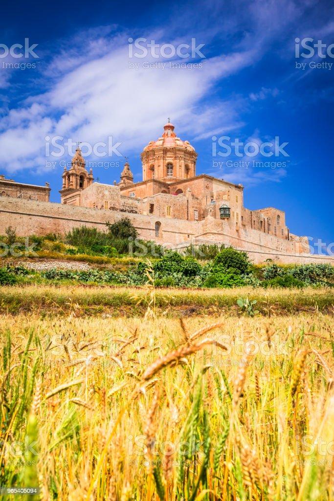 Mdina, fortified city on Malta island zbiór zdjęć royalty-free