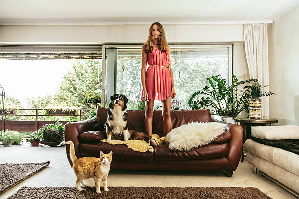 Me and my Pets stock photo