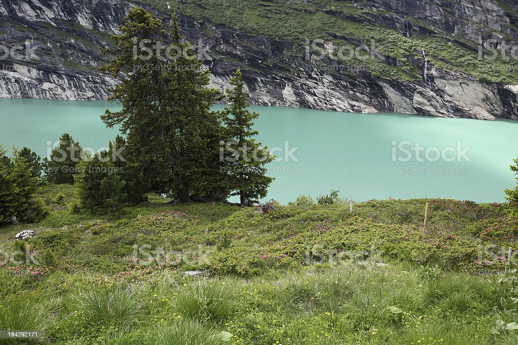 Meadow and alpine lake royalty-free stock photo