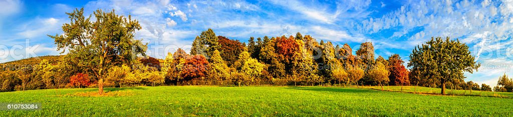 Meadow and colorful trees in autumn - Royalty-free Autumn Stock Photo