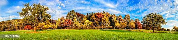 Meadow And Colorful Trees In Autumn Stock Photo - Download Image Now