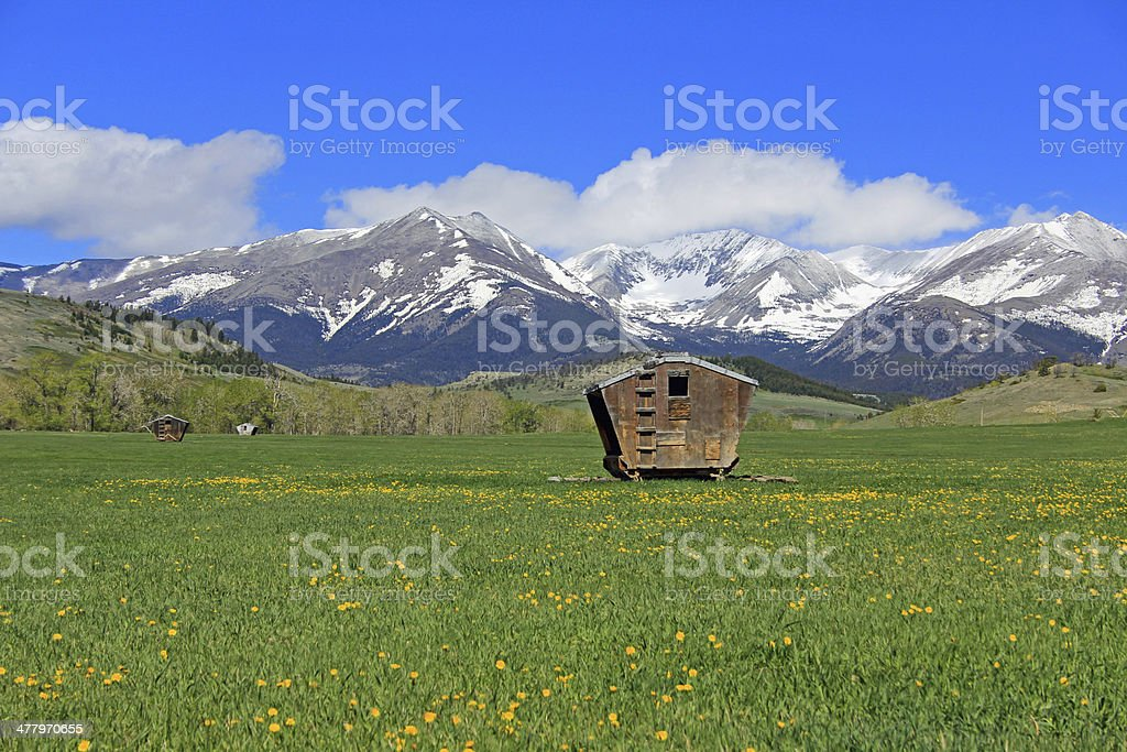 Meadow and Crazy Mountains royalty-free stock photo