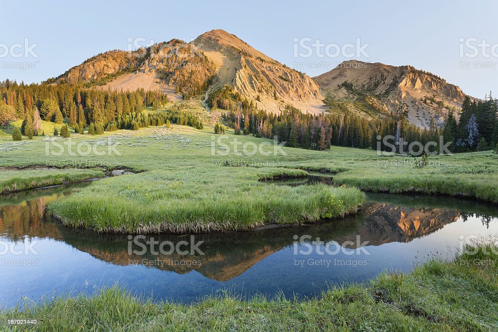 Meadow and lake at the foot of a mountain stock photo