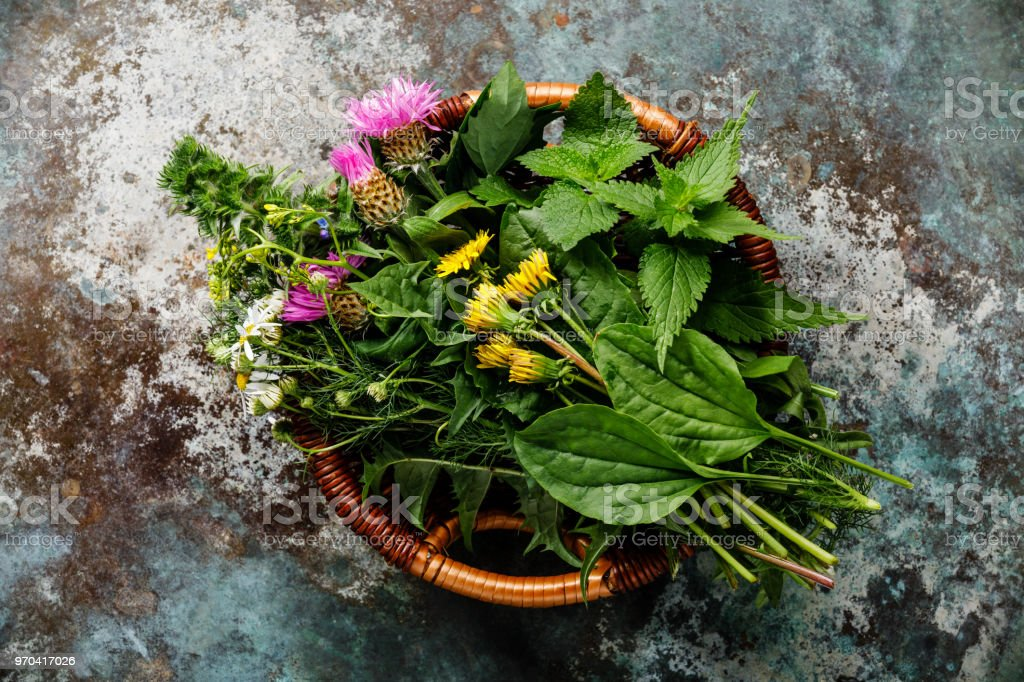 Meadow and Medicinal herbs for biohacking paleo diet royalty-free stock photo