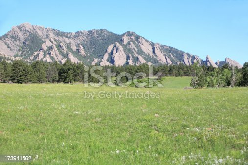 green mountain meadow.