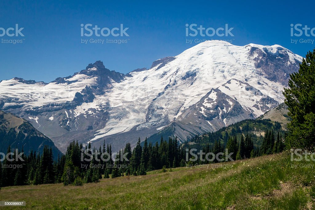Meadow and Snow-Capped Mountain stock photo