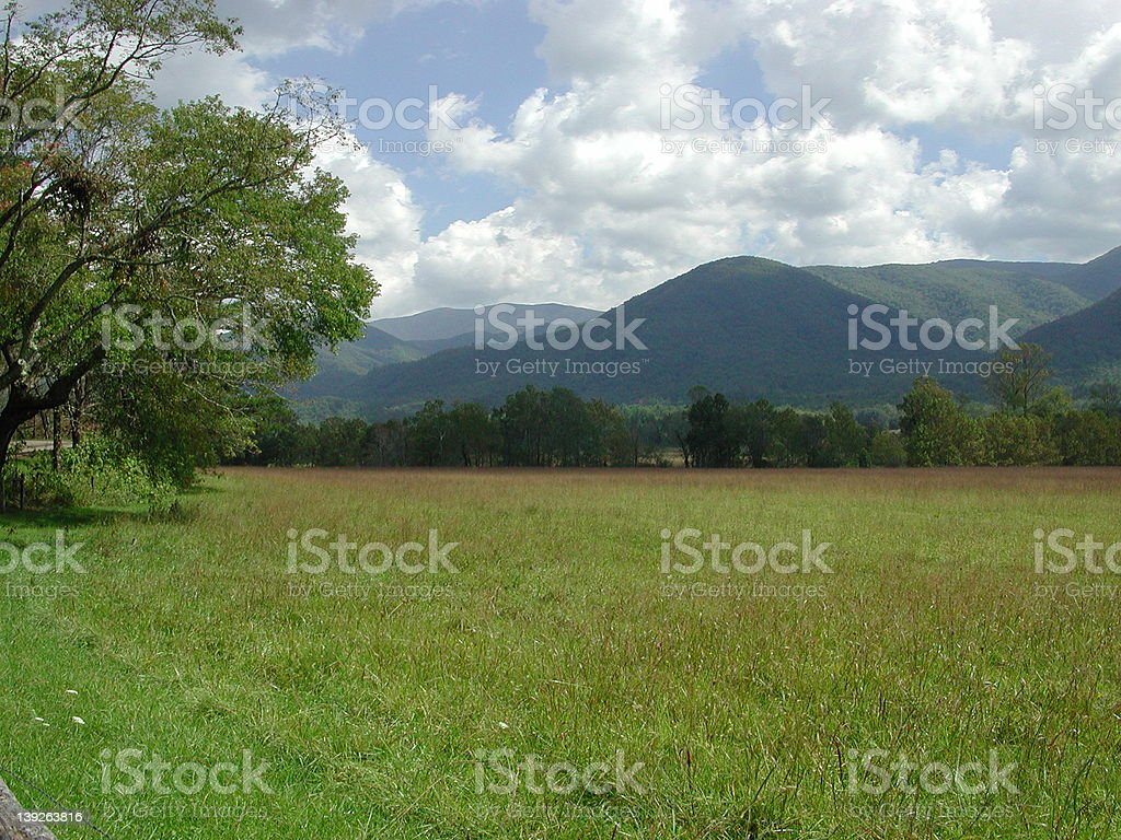 Meadow at Cades Cove royalty-free stock photo