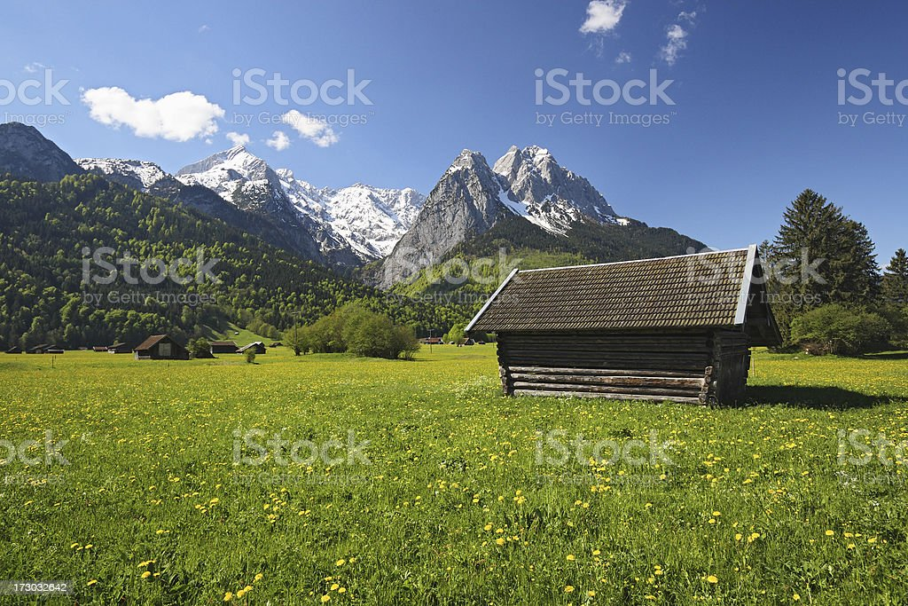 Meadow during the spring in Garmisch-Partenkirchen royalty-free stock photo