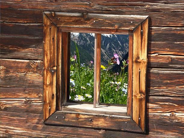 Wiese Blumen im Fenster eine hölzerne Hütte – Foto