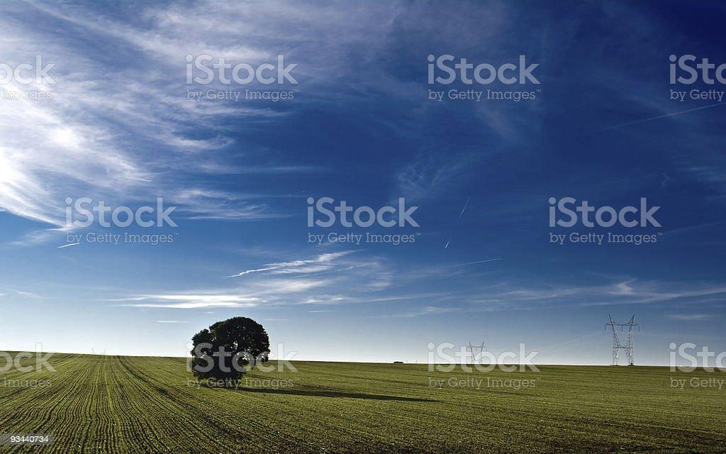 Meadow in Farbe Lizenzfreies stock-foto
