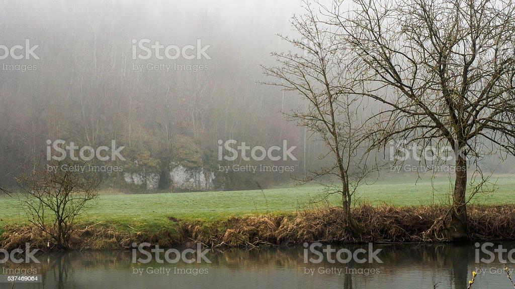 Meadow in fog stock photo