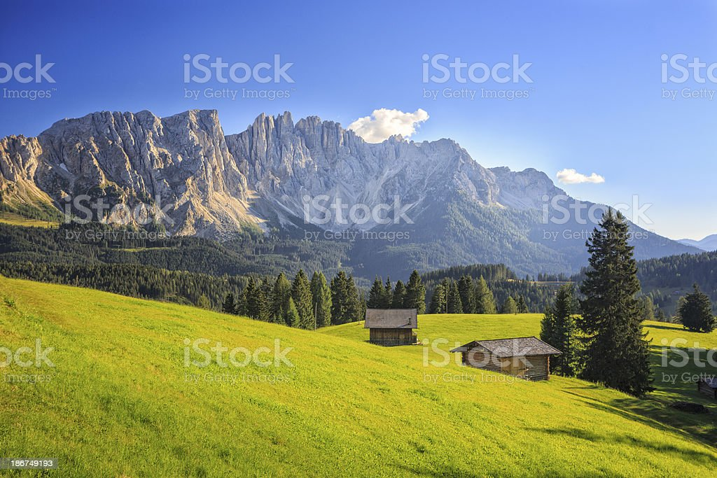 Meadow in front of Latemar mountain range, Dolomites, Italy stock photo
