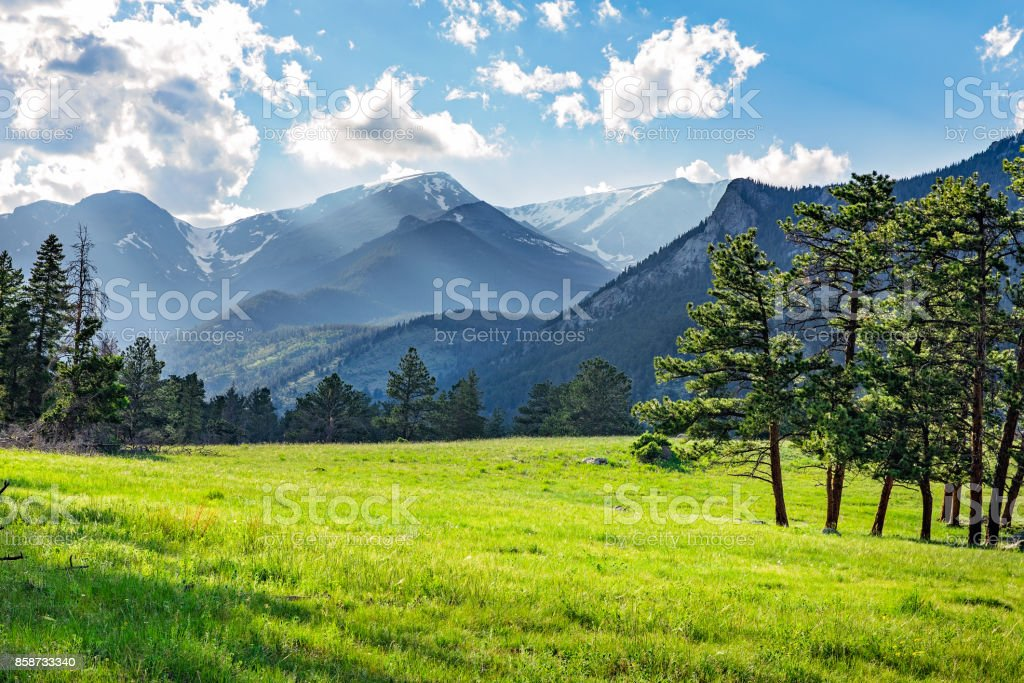 Meadow in Rocky Mountain National Park stock photo