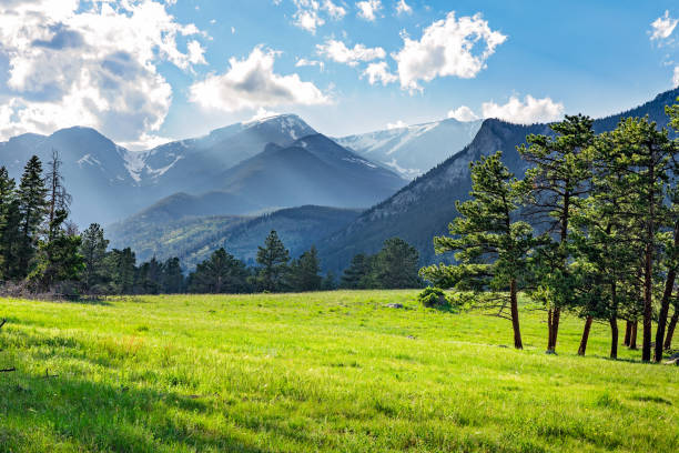 Meadow in Rocky Mountain National Park Idyllic summer landscape in Rocky Mountain National Park, colorado, with green mountain pastures and mountain range in the background. rocky mountains north america stock pictures, royalty-free photos & images