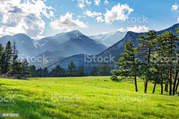 Photo of Meadow in Rocky Mountain National Park