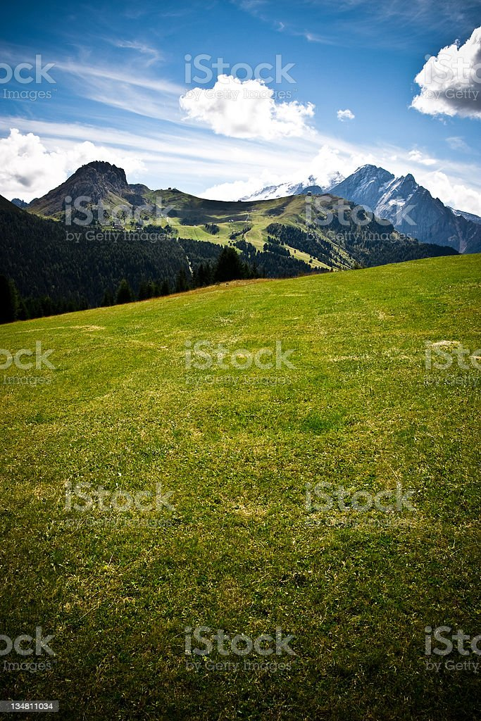 Meadow in the Alps royalty-free stock photo