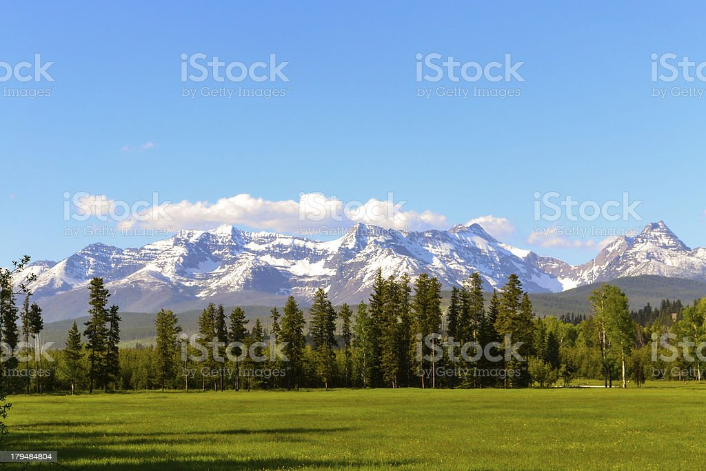 Meadow in Western Montana stock photo