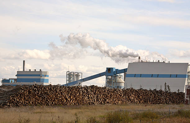 Meadow Lake pump and paper mill in scenic Saskatchewan stock photo