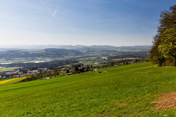Wiese Berg Heitersberg auf – Foto