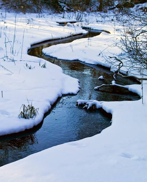 Meadow Stream, winter stock photo