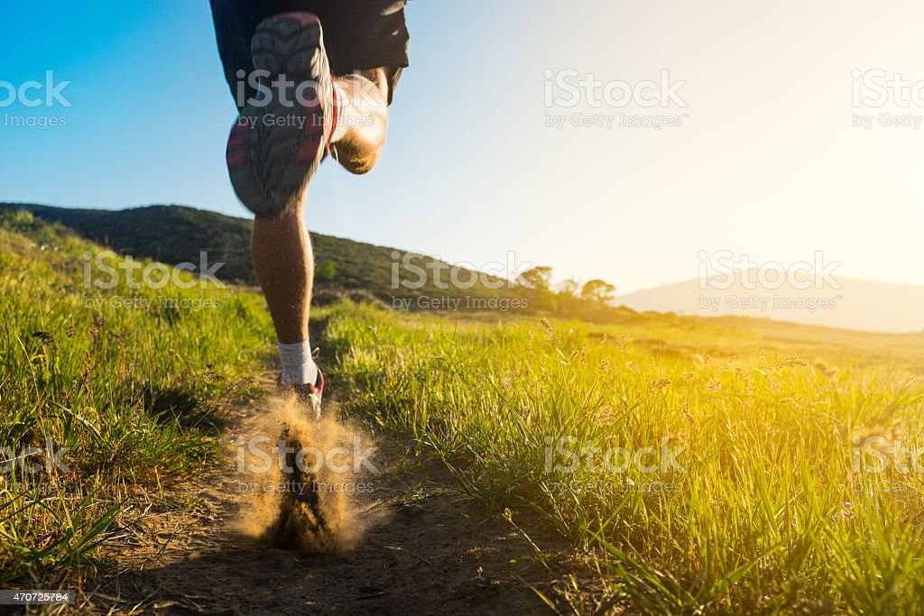Meadow Trail Runner royalty-free stock photo