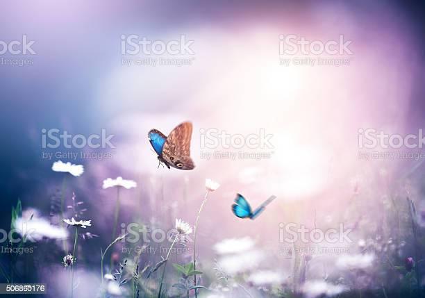 Meadow with butterflies picture id506860176?b=1&k=6&m=506860176&s=612x612&h=wsstkbnabovxbosq38i  xv1jgc8c0dbzv9u4mz9a5s=