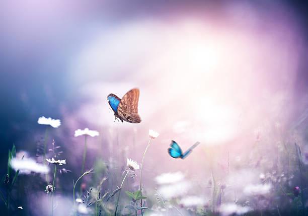 Meadow with butterflies picture id506860176?b=1&k=6&m=506860176&s=612x612&w=0&h=i6okxkigbbaarlxetfhagxm9y2tlnelpgaqw4qmmspw=