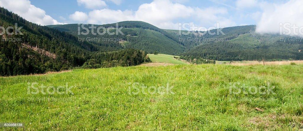 meadow with hills and blue sky with clouds zbiór zdjęć royalty-free