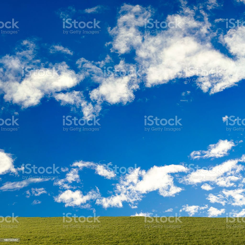 meadow with sky royalty-free stock photo