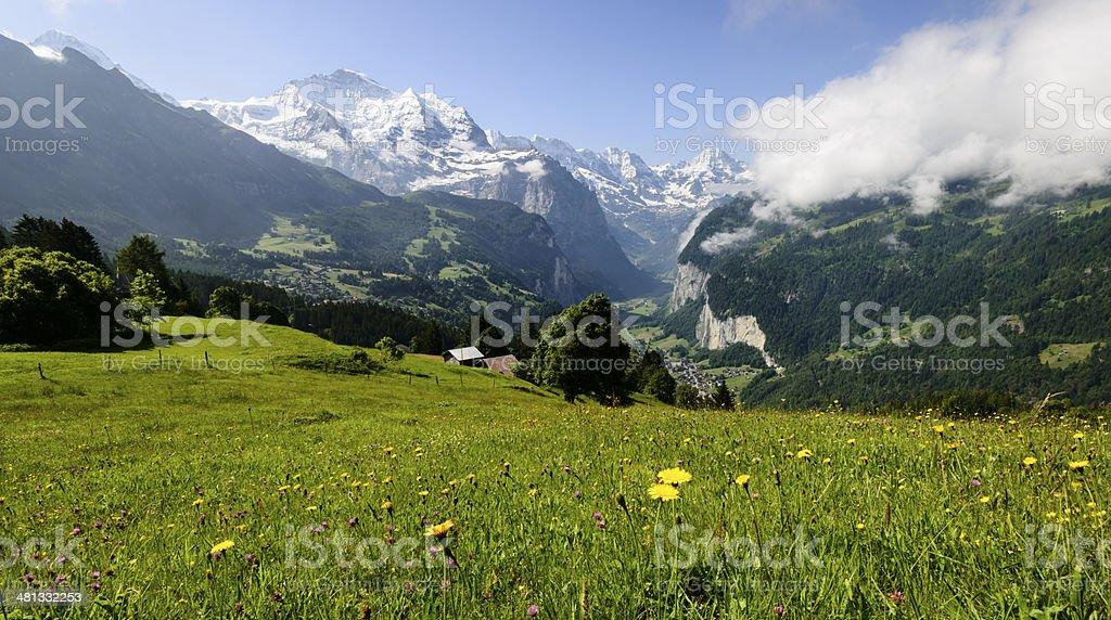 Wiese mit schneebedeckten Bergen im Hintergrund -XXXL – Foto
