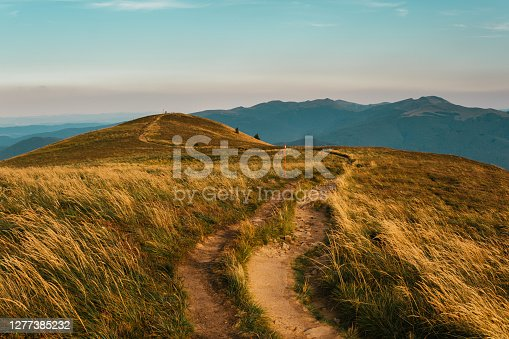istock Meadows and mountains. Gold colored grassland 1277385232