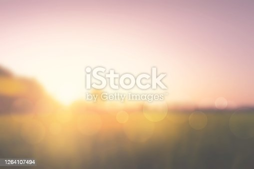 istock meadows and sunrise nature blurry background 1264107494