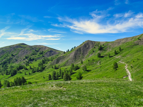 istock Meadows at Col of Allos 1133235391