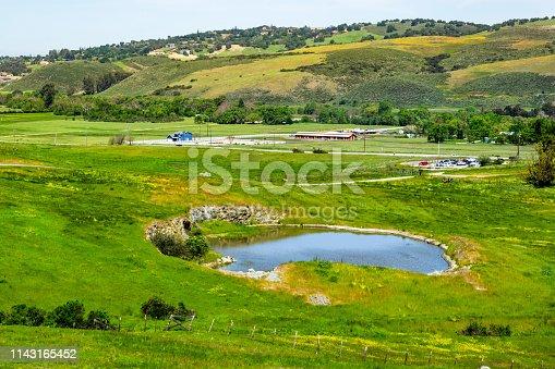 Meadows covered in green grass and small pond at Rancho San Vicente, part of Calero County Park, Santa Clara county, south San Francisco bay area, San Jose, California