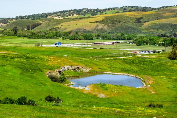 weilanden bedekt met groene gras en kleine vijver bij rancho san vicente, een deel van calero county park, santa clara county, zuid san francisco bay area, san jose, californië - vijver stockfoto's en -beelden