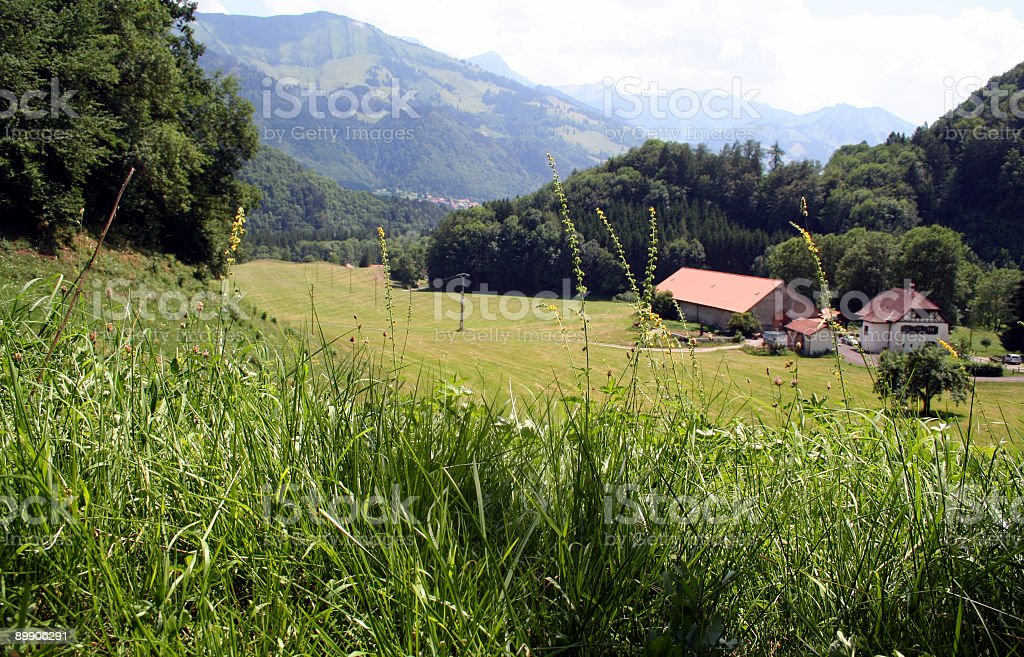 Meadows in Gruyères, Switzerland royalty-free stock photo