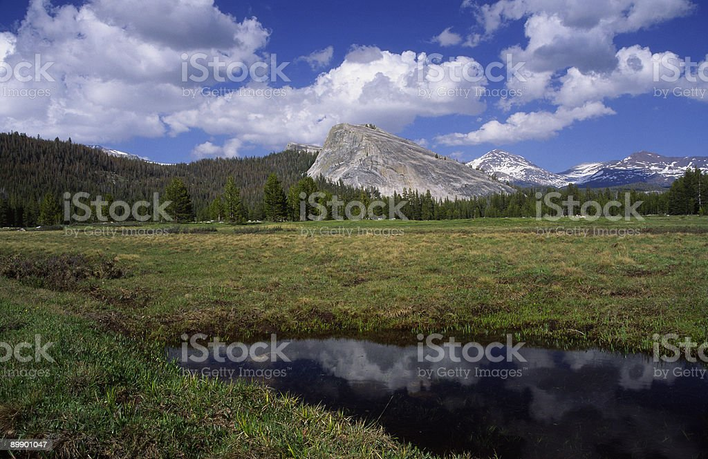 Meadows in Yosemite High country royalty-free stock photo