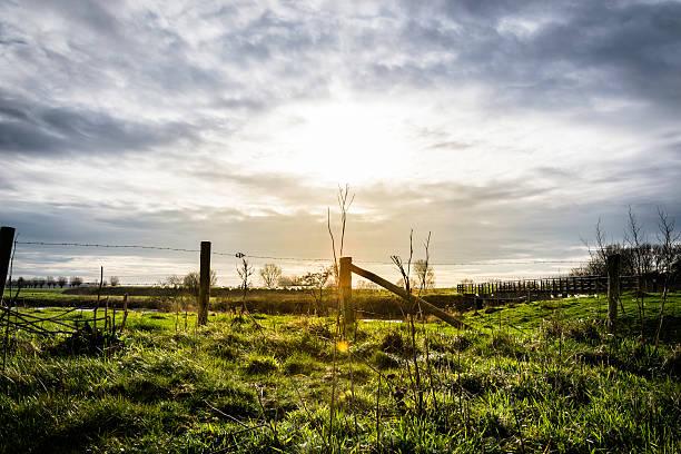 Meadows stock photo
