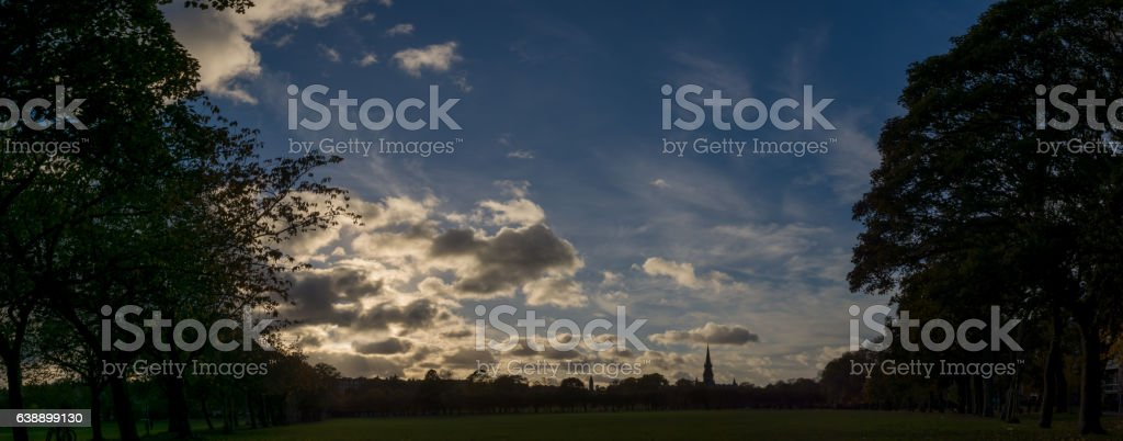 Meadows surrounded by a line silhouette of trees stock photo
