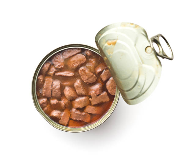 meal for dog or cat. canned meat with sauce. - lata comida gato imagens e fotografias de stock