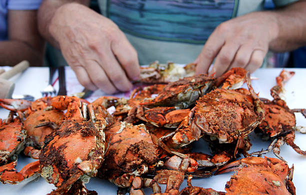 Meal of fresh steamed crabs Fresh steamed crabs, served at a restaurant by the dozen. Maryland, on the Chesapeake Bay. bay of water stock pictures, royalty-free photos & images