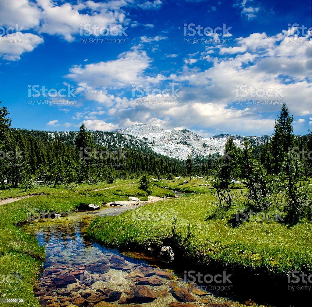 Meandering Creek in the Sierra Nevadas stock photo