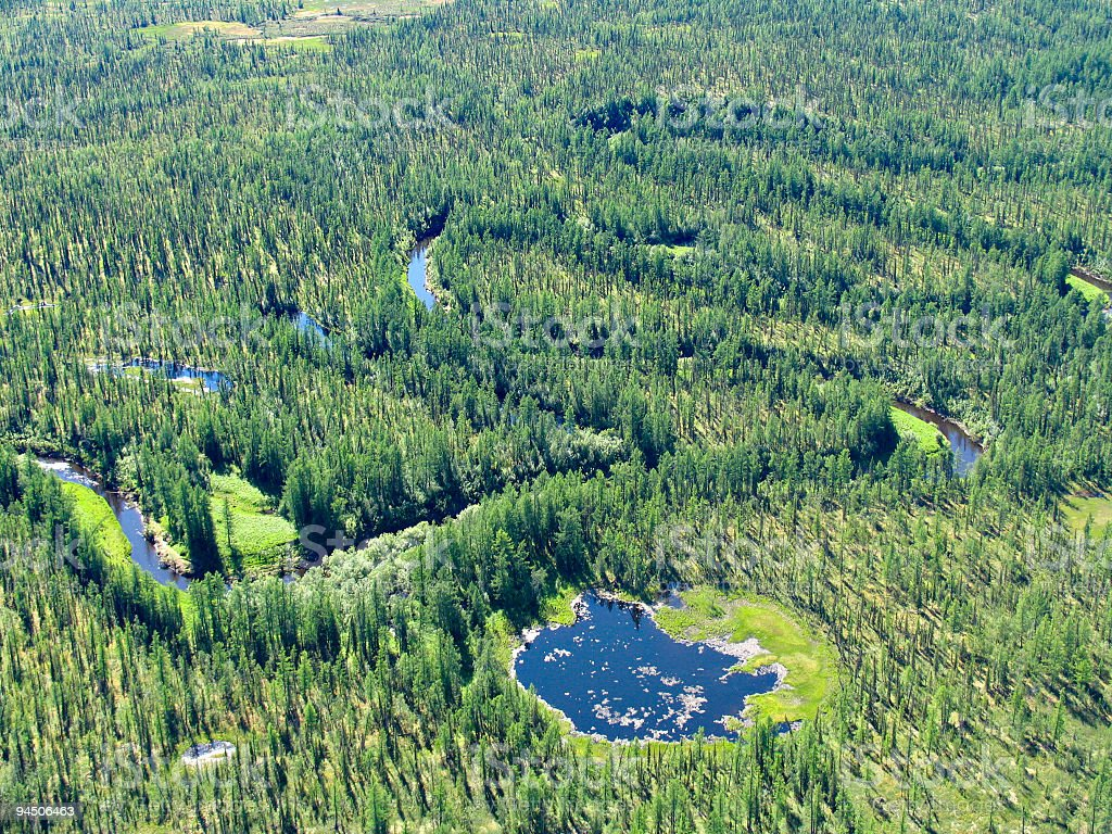 Meandering river in siberian taiga stock photo