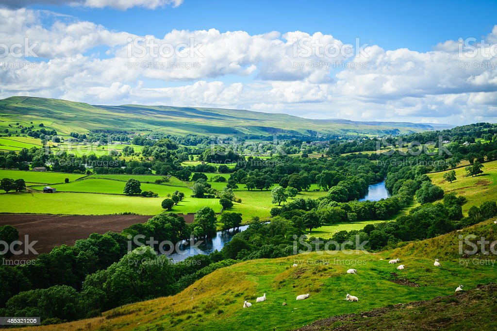 Meandering River making its way through lush green rural farmland stock photo