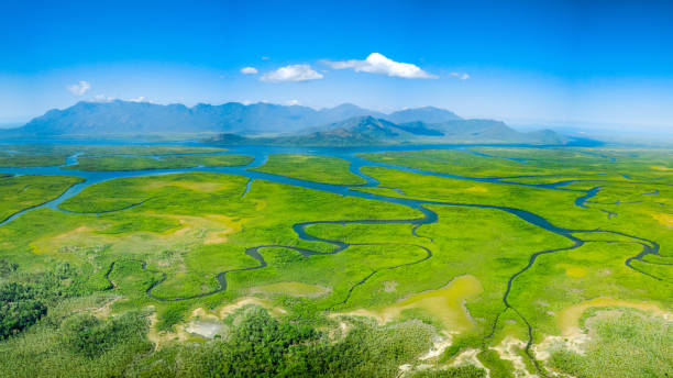 Meandering rivers and mangroves of Hinchinbrook Island Meandering rivers and mangroves in front of Hinchinbrook Island, Queensland, Australia sea channel stock pictures, royalty-free photos & images