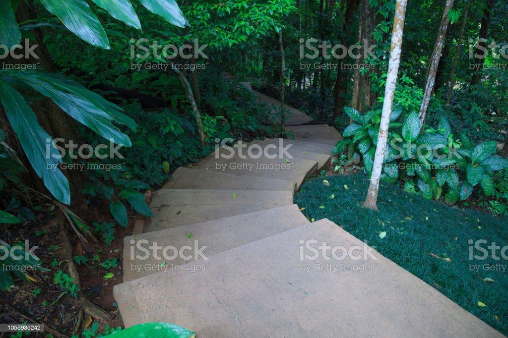 Photo libre de droit de Sinueux Escalier Étapes Dans Le Jardin ...