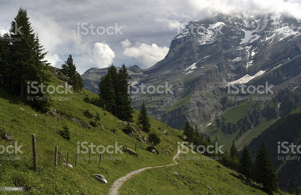 meandering trail royalty-free stock photo