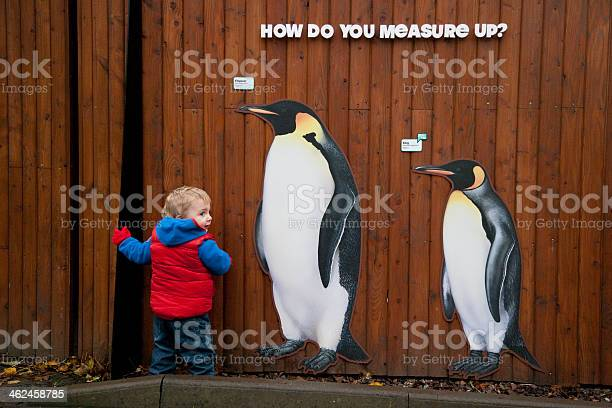 Measuring up picture id462458785?b=1&k=6&m=462458785&s=612x612&h=egdeqijjocq0fmpitd7hqlvps0mezihfysxoot74dsu=