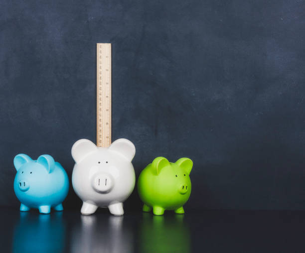 Measuring wealth and savings. Piggy banks with rulers stock photo