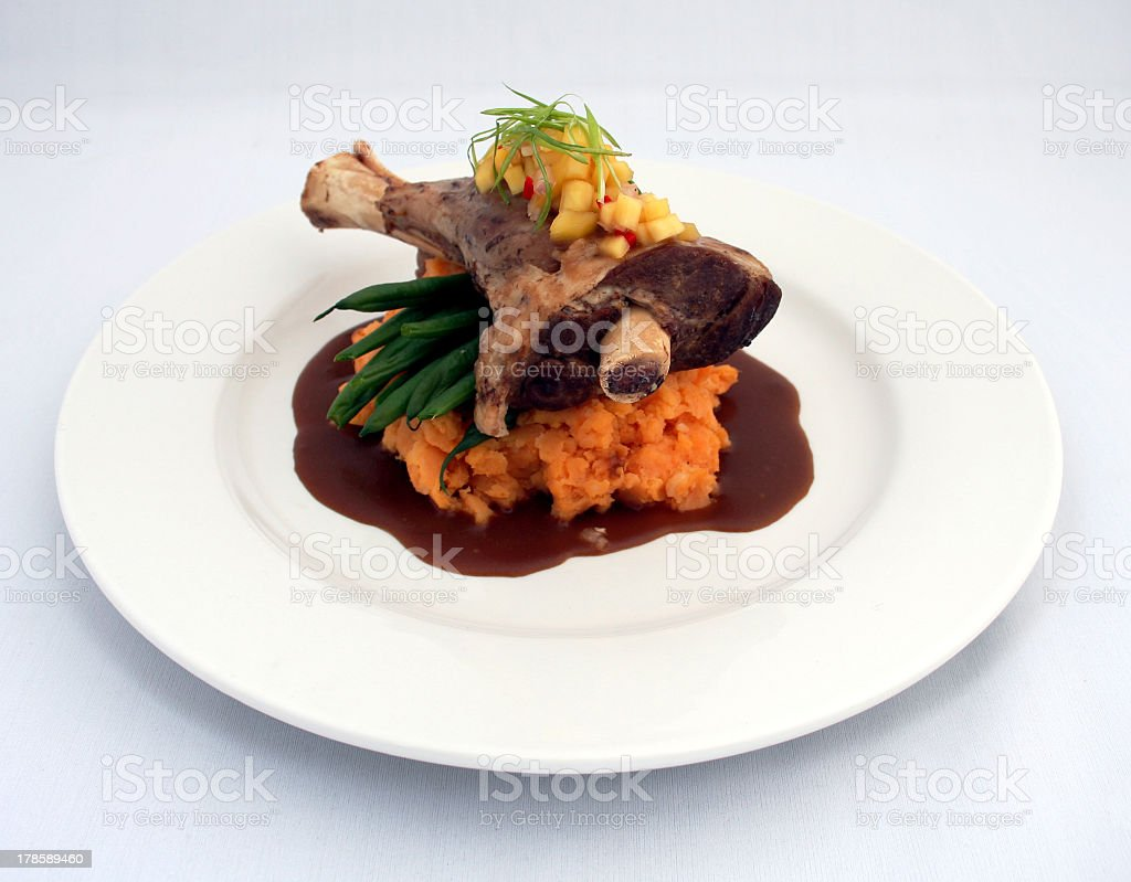 Meat and gravy royalty-free stock photo